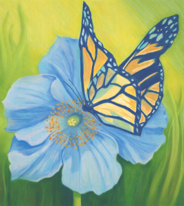 Blue Poppy Monarch