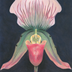 Eden's Orchid
